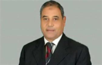 برلماني: ثورة 30 يونيو منحت المصريين حق التعبير بحرية
