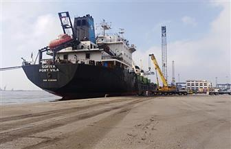 تداول 30 سفينة وتفريغ 3718 طن حديد بموانئ بورسعيد