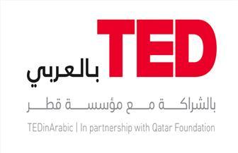 """قطر تحاول اختراق الأوساط الصحفية بدورات """"تيد العربية"""" عن حقوق الإنسان"""