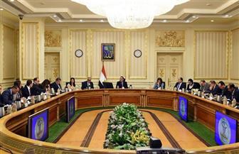 """""""الحكومة"""" تعتمد توصيات اللجنة الوزارية لفض منازعات الاستثمار"""