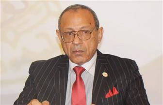 «الحركة الوطنية»: المصريون هزموا مخططات أمراء الشر ودشنوا رئة تشريعية للحياة النيابية