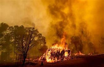 فاينانشيال تايمز: الهند تتعرض لأسوأ مواسم حرائق الغابات منذ سنوات
