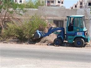 رفع 20 طن مخلفات وتجريد الأرصفة في حملة على أحياء مدينة سفاجا |صور