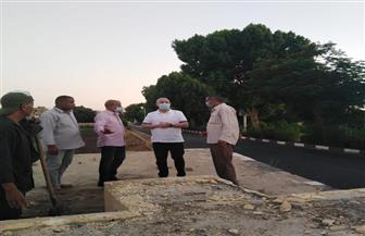 محافظ الأقصر يتفقد أعمال تطوير مدخل مدينة البياضية وطريق المسار السياحي | صور