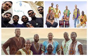 """فريقا """"هاي دام"""" و""""الميناء"""" بمهرجان الصيف في مكتبة الإسكندرية.. غدا"""