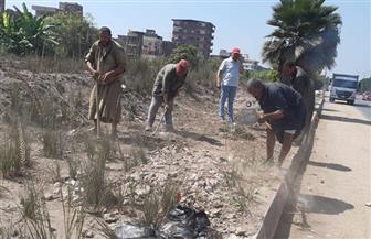 رفع 170 طن قمامة ومخلفات من قرى وطرق بالمحلة الكبرى   صور