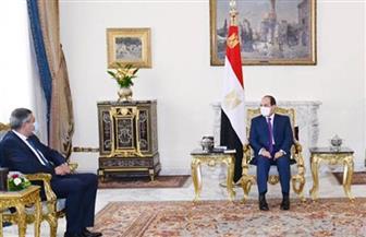 الرئيس السيسي يؤكد ضرورة استئناف حركة السياحة وفق ضوابط السلامة والصحة في قطاع السياحة