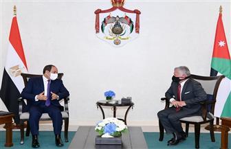 قمة الرئيس السيسى والملك عبد الله تؤكد تعزيز التعاون المشترك فى مختلف المجالات
