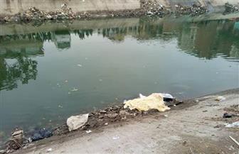 انتشال جثة فتاة مجهولة من بحر مويس في منيا القمح