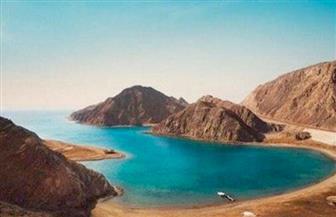 """تعرف على حقيقة إقامة مشروعات سياحية بمحمية """"نبق"""" في جنوب سيناء تضر بالشعاب المرجانية"""