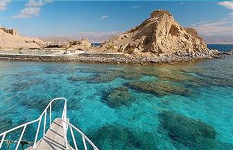 ما حقيقة زيادة رسوم التخييم بالمحميات الطبيعية بسيناء والبحر الأحمر؟