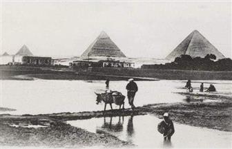 نهر النيل يسجل أعلى منسوب منذ 100 عام.. «بوابة الأهرام» تنشر قصة أعلى فيضان بمصر | صور