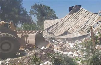 الزراعة: ذبح 3500 أضحية مجانا في ثالث أيام عيد الأضحى المبارك| صور
