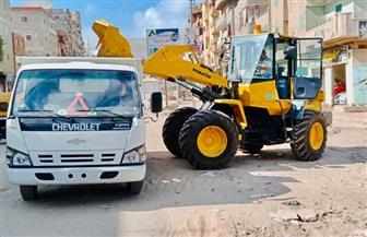 محافظ كفرالشيخ: رفع 2194 طن مخلفات في رابع أيام العيد وحملات نظافة مكثفة| صور