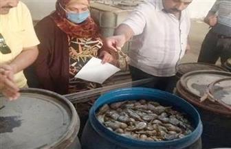 صحة الشرقية: إعدام 8 أطنان أغذية فاسدة في العاشر من رمضان |صور