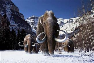 العلماء يحددون درجة الحرارة على الأرض خلال العصر الجليدي