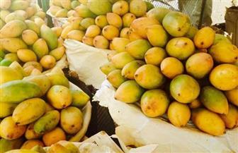 انخفاض المانجو الهندي.. أسعار الفاكهة اليوم الإثنين 7 يونيو 2021