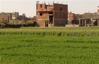 """بعد تصريحات الرئيس السيسي..""""الأراضي الزراعية"""" خط أحمر.. خبراء: قضية أمن قومي"""