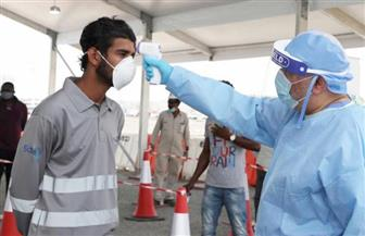 الصحة الإماراتية: تسجيل 216 إصابة جديدة بفيروس كورونا المستجد