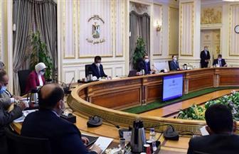 إنفوجراف   الحصاد الأسبوعي لمجلس الوزراء خلال الفترة من 1 حتى 7 أغسطس 2020