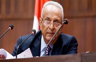 أبوشقة: نؤيد المشروع الوطني للرئيس السيسي في إقامة دولة ديمقراطية