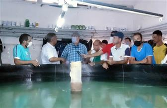 وزير الزراعة يقوم بجولة مفاجئة لبعض المشروعات الزراعية بالإسكندرية والبحيرة|صور