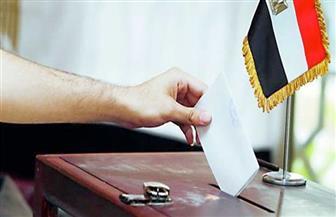 بدء تصويت المصريين بالخارج لليوم الثاني لمجلس الشيوخ في فرنسا وإيطاليا وألمانيا وجنوب إفريقيا