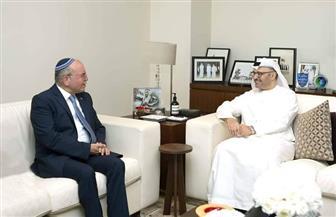 قرقاش: معاهدة السلام الإماراتية الإسرائيلية تصنع السلام في المنطقة