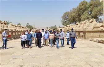 وزير الآثار يتفقد ترميم 29 كبشا بمعابد الكرنك في الأقصر