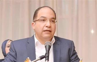 """""""رجال الأعمال المصريين"""" تعرض على """"موانئ دبي"""" فرصا واعدة لزيادة استثماراتها في مصر"""