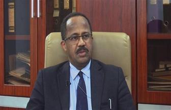 السودان يشيد باستجابة مصر السريعة للمساعدة في مجابهة أي انتشار وبائي محتمل