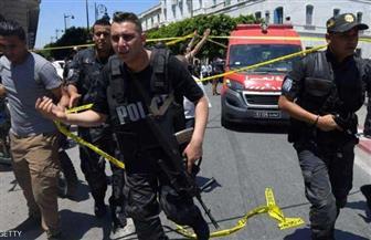 """تونس تحبط مخططا يهدف لإنشاء """"إمارة إرهابية"""" جنوب البلاد"""