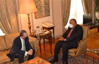وزير الخارجية يستقبل نظيره الأرميني|صور