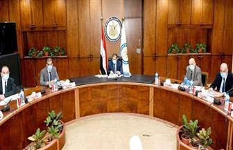 وزير البترول: رفع كفاءة منظومة السلامة والتحسين المستمر للأداء | صور