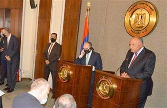 وزير خارجية أرمينيا: ندعم الدور المصري في المنطقة ونرفض أي محاولة لزعزعة الاستقرار