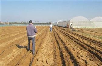 «الزراعة»: مركز بحوث الصحراء يطلق الخطة البحثية الجديدة لتحقيق التنمية الزراعية في الصحراء