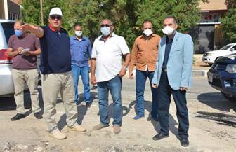 محافظ الوادي الجديد يتابع أعمال رصف طريق المدرسة المصرية اليابانية بالخارجة | صور