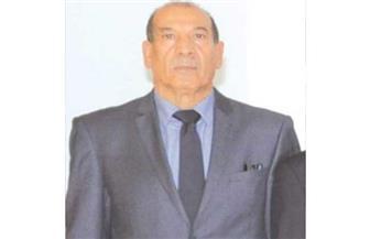"""""""المجلس الدستوري الجزائري"""": تعديل الدستور اللبنة الأساسية الأولى لإرساء الجمهورية الجديدة"""