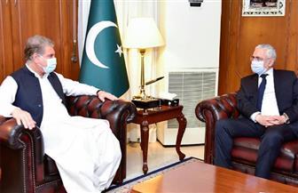 وزير خارجية باكستان يستقبل السفير المصري