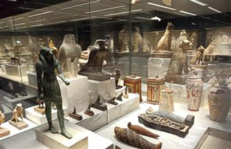 السياحة والآثار تطلق فيديو جديدا عن متحف شرم الشيخ | فيديو