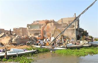 إزالة 85 منزلا من إجمالي 302 في حملة لإزالة التعديات بالمنزلة | صور
