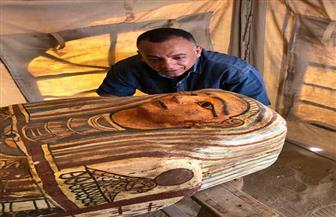 تعرف على تفاصيل الكشف الأثري الجديد بمنطقة سقارة|صور