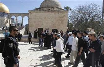 عشرات المستوطنين يقتحمون «الأقصى» بحماية شرطة الاحتلال الإسرائيلي