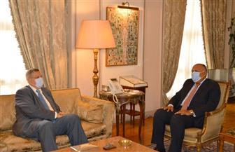 وزير الخارجية يبحث مع المنسق الأممي بلبنان سبل الدعم الممكنة لتجاوز أزمته الحالية | صور