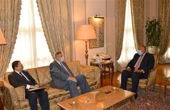 شكري والمنسق الأممي الخاص في لبنان يؤكدان ضرورة الاستمرار في دعم لبنان