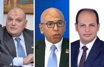 رفض المصريين لتحريض المخربين يفضح مخطط المفلسين.. أي صفعة أخرى تريدها الجماعة الإرهابية؟