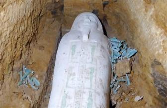 «الأعلى للآثار» يعلن العثور على تابوت حجري وتماثيل من الأوشابتي بمنطقة آثار الغريفة بالمنيا | صور