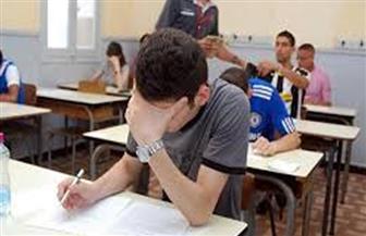 طلاب الدبلومات الفنية يؤدون الامتحان في تاسع أيام الدور الثاني
