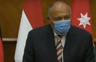 وزير الخارجية: نحن على اتصال دائم مع السلطة الفلسطينية لتعزيز جهود إقامة دولة فلسطين