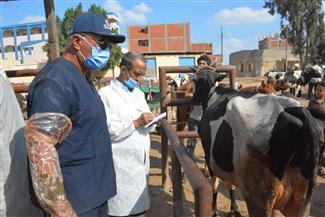 محافظ الغربية يتفقد القافلة الطبية البيطرية ويتابع استقبال طلبات التصالح بمحلة منوف |صور